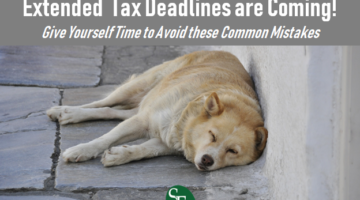 Dog Days of Summer, That Means Extended Tax Deadlines are Coming, Give Yourself Time to Avoid These Common Mistakes, SFS Tax and Accounting Services, tired dog, hot dog, brick paved streets